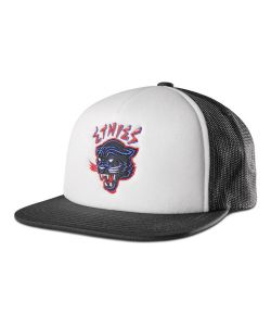 Etnies Panther Snapback Black Hat