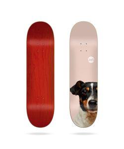 Jart Friends 8.125'' LC Σανίδα Skateboard