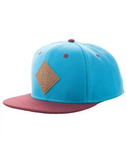 Neff All Day 2 Snapback Blue Maroon Hat