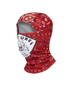 PICTURE MY GANG BALACLAVA